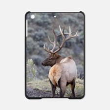 Funny Nature iPad Mini Case