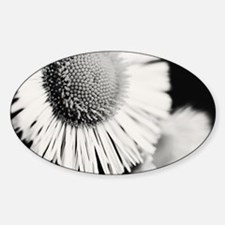 Unique Flora Sticker (Oval)