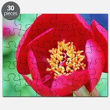 Dandelion art Puzzle