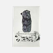 Bouvier Des Flandres Rectangle Magnet (10 pack)