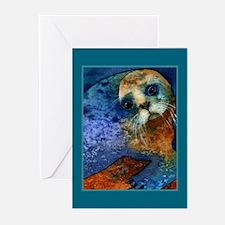 Big-eyed Seal Greeting Cards (Pk of 10)