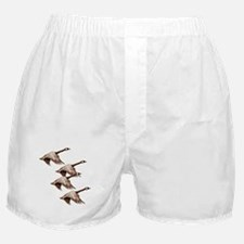 Canada Geese Flying Boxer Shorts