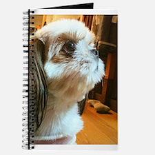 My cutie Journal