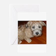 Glen_of_Imaal_Terrier wheaton Greeting Cards