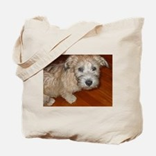 Glen_of_Imaal_Terrier wheaton Tote Bag