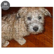 Glen_of_Imaal_Terrier wheaton Puzzle