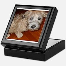 Glen_of_Imaal_Terrier wheaton Keepsake Box
