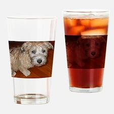 Glen_of_Imaal_Terrier wheaton Drinking Glass