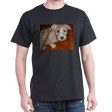 Glen_of_Imaal_Terrier wheaton T-Shirt