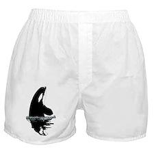 Orca Killer Whale Boxer Shorts