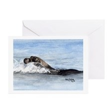 Swimming Seal Greeting Cards (Pk of 10)
