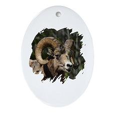 Bighorn Sheep - Ram Oval Ornament