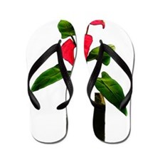Unique Botanical Flip Flops