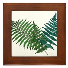 Unique Plants Framed Tile