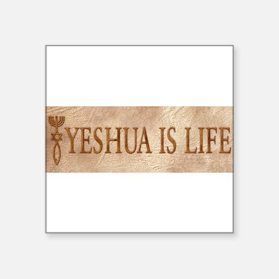 """Cute Torah4life Square Sticker 3"""" x 3"""""""