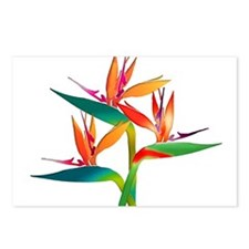Unique Tropical flowers Postcards (Package of 8)
