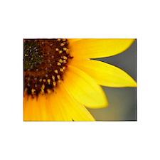 Soft Focus Sunflower 5'x7'Area Rug