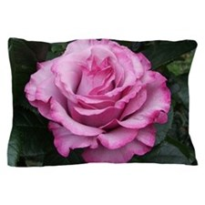 Neptune Hybrid Tea Rose Pillow Case