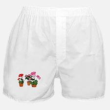 Cute Botanical Boxer Shorts