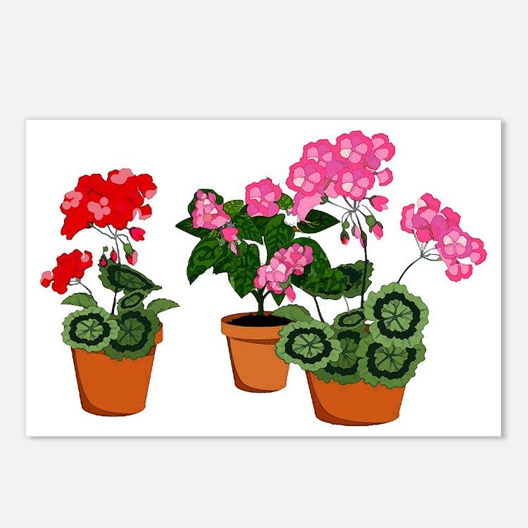 Cute Geranium Postcards (Package of 8)