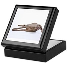 Cute Looking down Keepsake Box