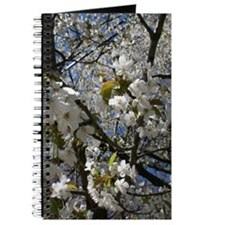 Blossoms and Blue Sky Journal