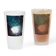 Mendenhall Glacier Ice Cave Drinking Glass
