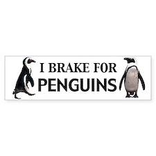 I brake for Penguins Bumper Bumper Sticker