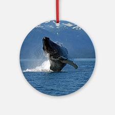 Humpback Whale Breaching Alaska Round Ornament