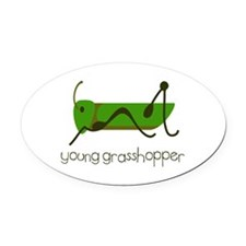 Young Grasshopper Oval Car Magnet