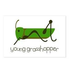 Young Grasshopper Postcards (Package of 8)
