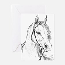 "Arabian Portrait ""Gee Gorgeou Greeting Cards (Pack"