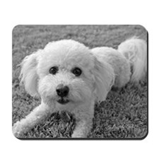 """Playful Bichon"" Mousepad"
