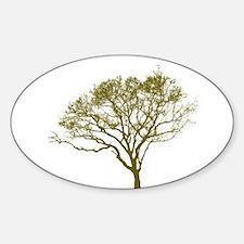 Green Tree Decal