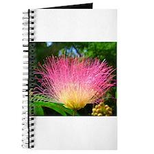 Cute Mimosa Journal