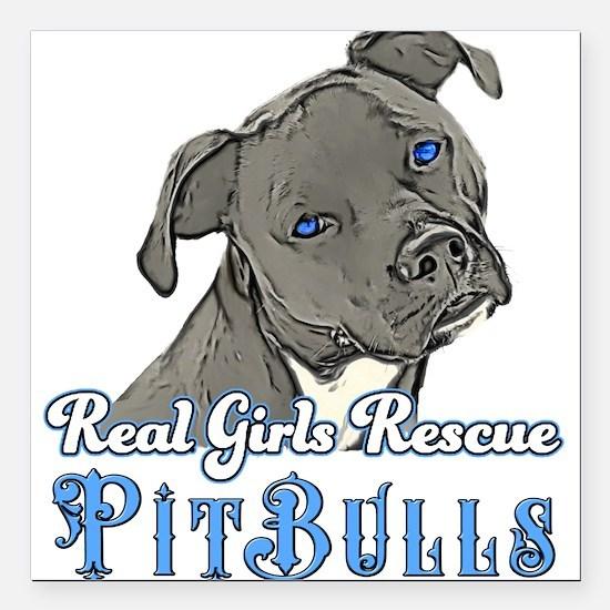 "Pit bull Square Car Magnet 3"" x 3"""