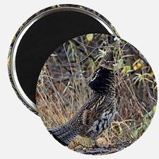 Partridge 3 Magnet