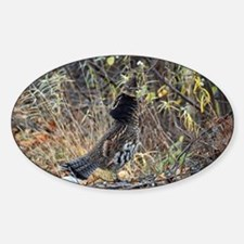 Partridge 3 Sticker (Oval)