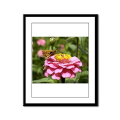 Butterfly on Flower Framed Panel Print