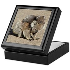 Unique Koala bear Keepsake Box