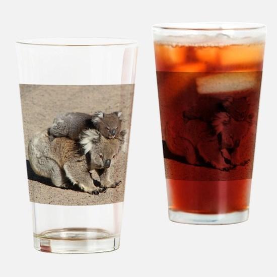 Funny Koala bear Drinking Glass