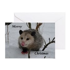 Snow Possum Greeting Cards