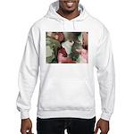 Incredible Images Fractal Hooded Sweatshirt