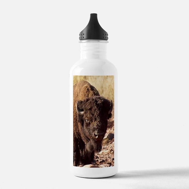 The Waterhole Water Bottle