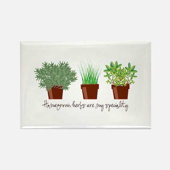 Homegrown Herbs Magnets