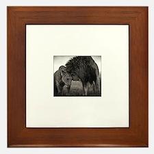 Cute Lioness Framed Tile