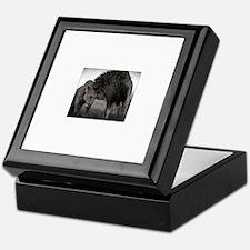 Unique Lioness Keepsake Box