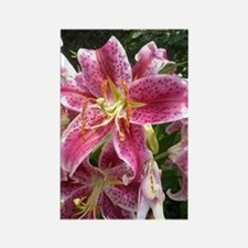 Purple Lily Rectangle Magnet