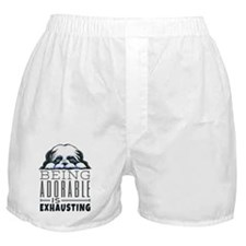 Adorable Shih Tzu Boxer Shorts