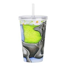 Big Boy Acrylic Double-wall Tumbler